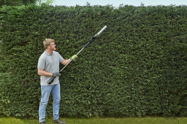 how to trim hedges with our cordless garden tools