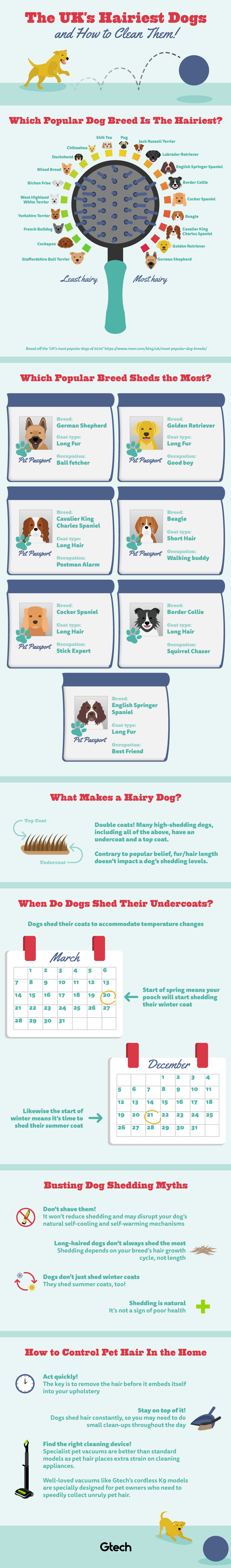 The UK's hairiest dogs and how to clean them