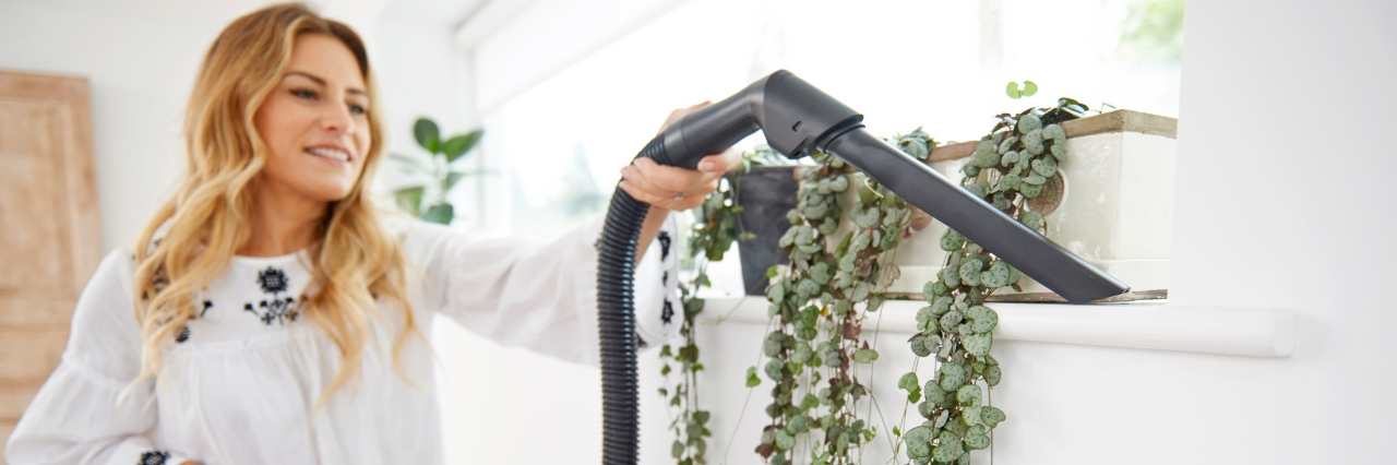 How to get rid of insects at home