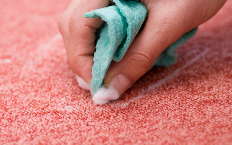 Cleaning red carpet with homemade cleaner