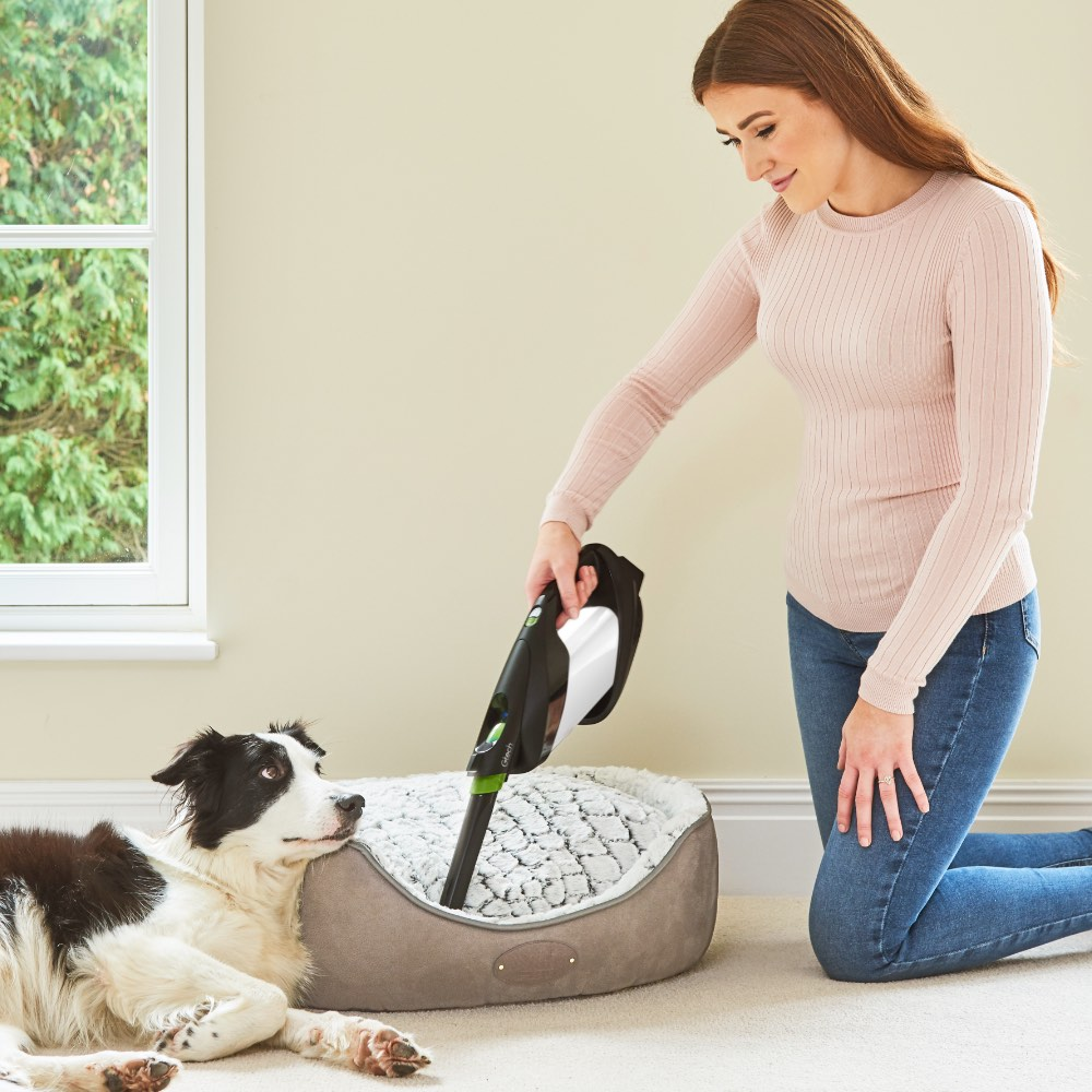 ProLite vacuum cleaning pet hair off dog bed