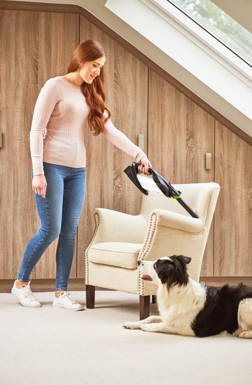 ProLite handheld vacuum cleaning pet hair off armchair