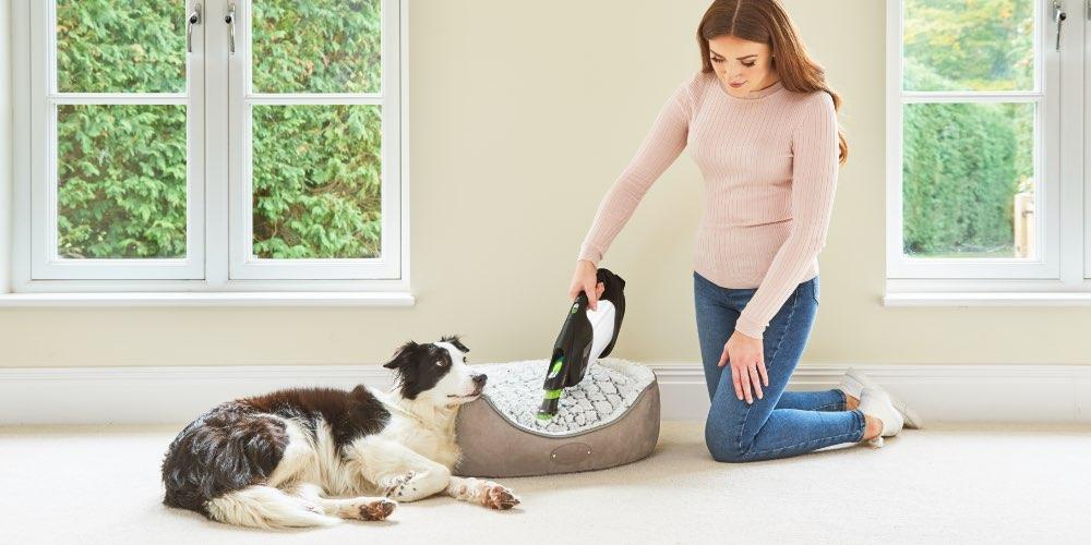 ProLite handheld vacuum cleaning pet hair off dog bed