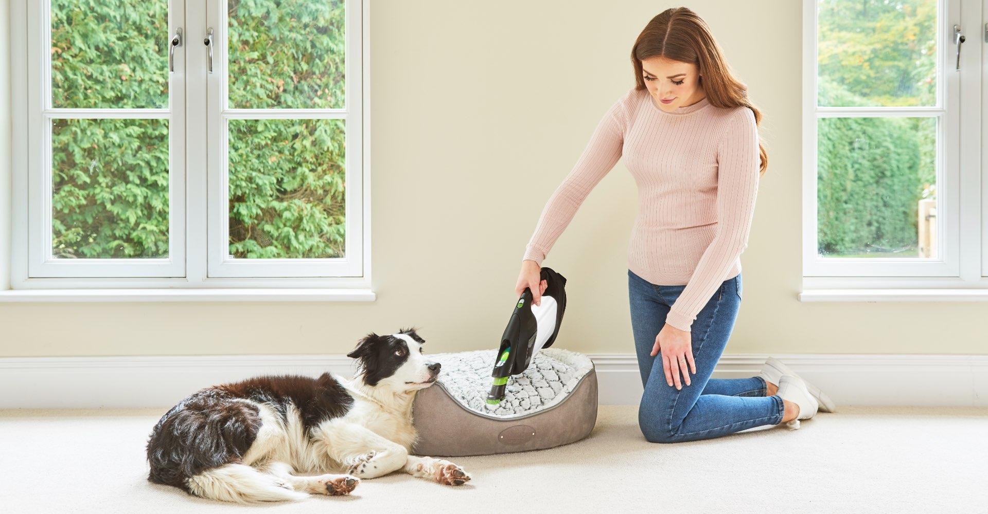 ProLite handheld vacuum with dusting brush attachment