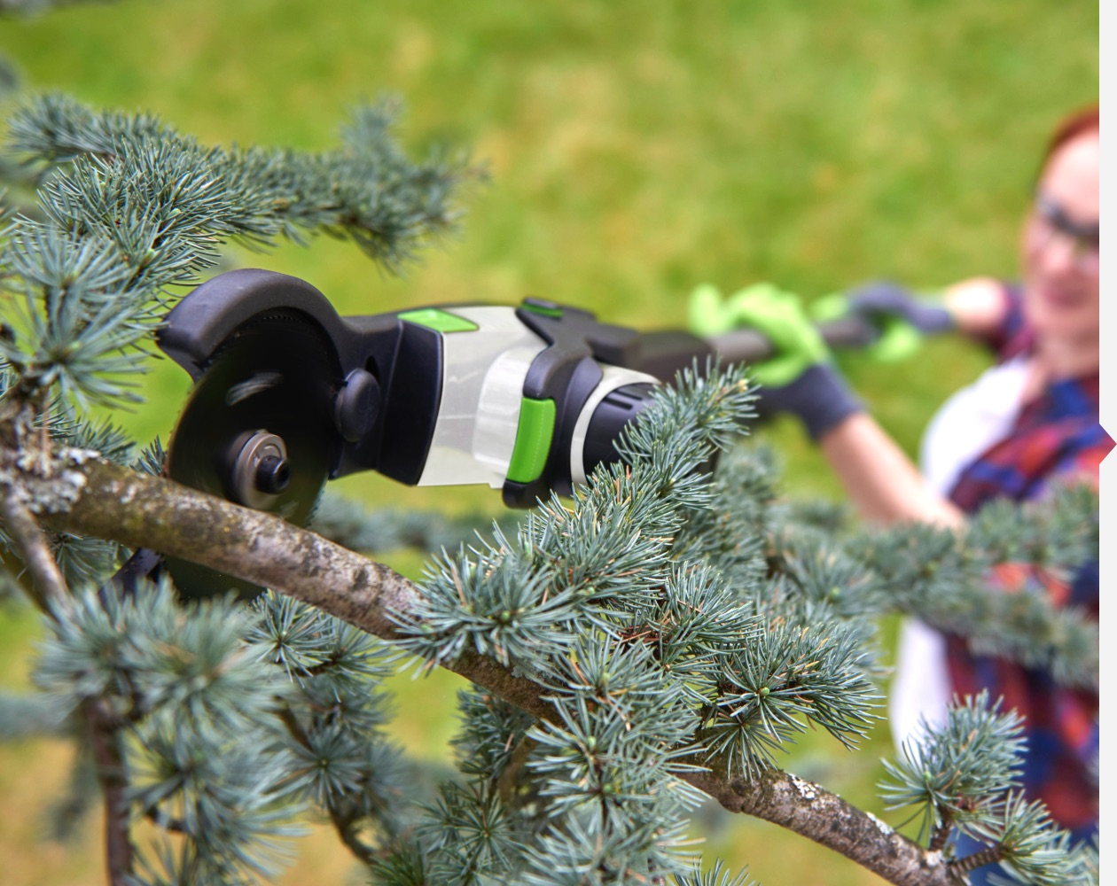 HT50 hedge trimmer